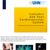 Cannabis and Your Cardiovascular System