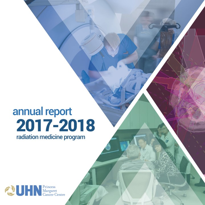 2017 Report cover with stylized graphics
