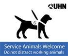 Icon of Service Animals