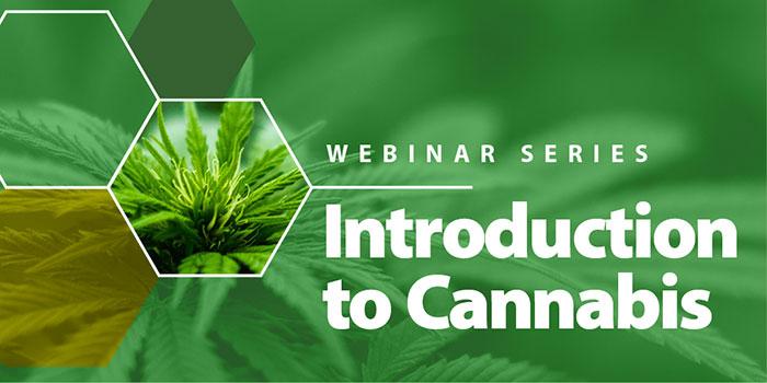 webinar with marijuana