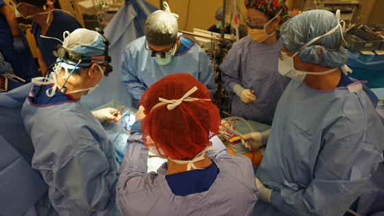 Team in OR performing a surgery